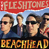 Beachhead by The Fleshtones