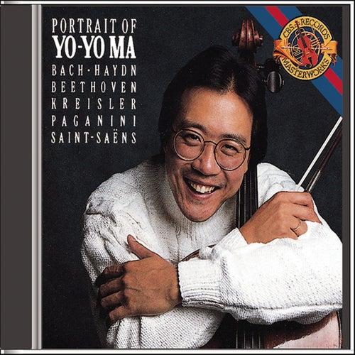 Portrait of Yo-Yo Ma by Various Artists