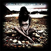 What We Reflect by Scars Of Life
