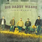 Fields Of Grace by Big Daddy Weave