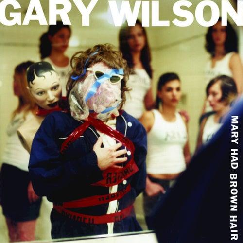 Mary Had Brown Hair by Gary Wilson