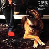 Stray by Derek James