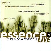 Essence of Praise & Worship LIVE by Various Artists