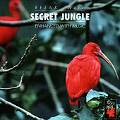Relax With ... Secret Jungle by Azzurra Music