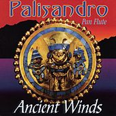PALISANDRO - Ancient Winds by Various Artists