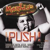 PUSH - Live at Fiamene by MORBLUS - Funky Blues Band