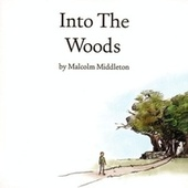 Into The Woods by Malcolm Middleton