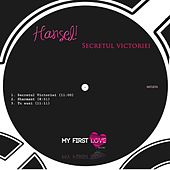 Secretul Victoriei - Single by Hansel