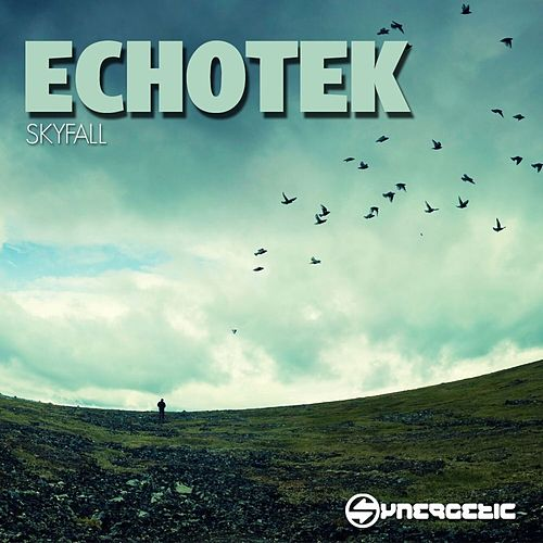 Skyfall - Single by Echotek