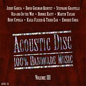 100% Homemade Music, Vol. III by Various Artists