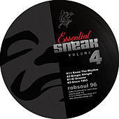 Essential Sneak Vol.4 by DJ Sneak