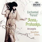 Enchanted Forest von Various Artists
