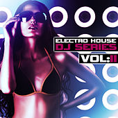 Electro House DJ Series, Vol. 2 by Various Artists