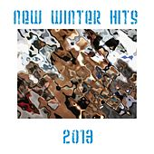 New Winter Hits 2013 by Various Artists