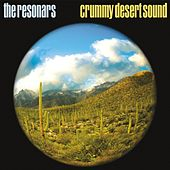 Crummy Desert Sound by Resonars