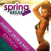 Springbreak 2013 - Dubstep Drum & Bass Edition by Various Artists