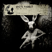 Fool Me Twice by White Rabbit