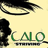 Striving by Calo