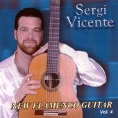 New Flamenco Guitar (Vol. IV) by Sergi Vicente