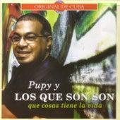 Qué Cosas Tiene la Vida by Pupy y los Que Son Son