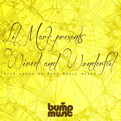 Lil Mark Presents Wired & Wonderful 5 Years of Bump Music - EP by Various Artists