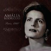 Paris 1960 - Amalia Rodrigues von Amalia Rodrigues