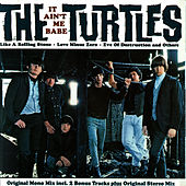 It Ain't Me Babe by The Turtles