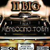 In A Mendocino Town by II Big