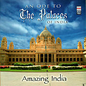 Amazing India - An Ode To The Palaces Of India by Taufiq Qureshi