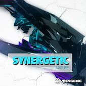 Synergetic Nature by Various Artists