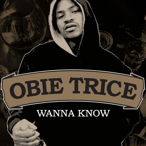 Wanna Know by Obie Trice
