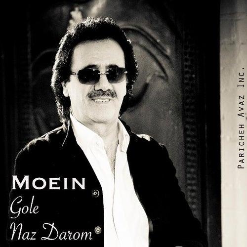 Gole Naz Darom by Moein