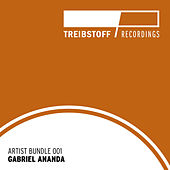 Treibstoff Artist Bundle - Gabriel Ananda by Gabriel Ananda