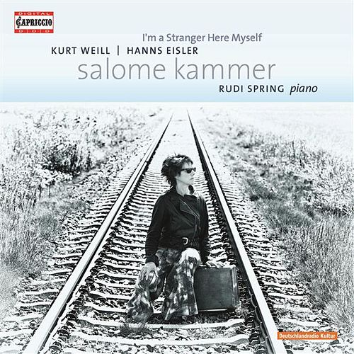 I'm a Stranger Here Myself by Salome Kammer