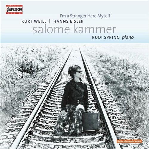 I'm a Stranger Here Myself by Salome Kammer