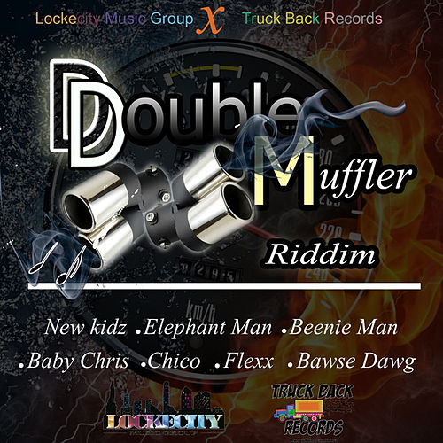 Double Muffler Riddim by Various Artists