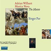 Willaert: Musica Nova - The Motets by Singer Pur