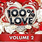 100% Love 2013, Vol. 2 by Audio Groove