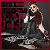 Electro & Tech-House Weapons 2013 by Various Artists