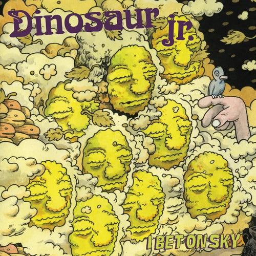 I Bet On Sky von Dinosaur Jr.
