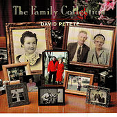 The Family Collection by David Petete