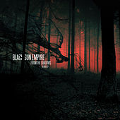 From the Shadows (Remix) - EP by Black Sun Empire