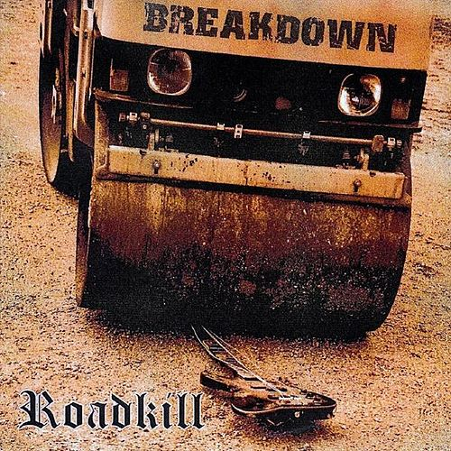 Roadkill by Breakdown