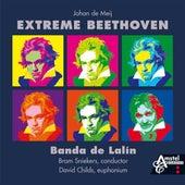 Extreme Beethoven by Johan de Meij