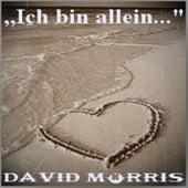 Ich bin allein by David Morris