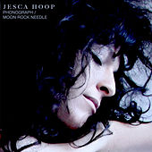 Phonograph/Moon Rock Needle by Jesca Hoop