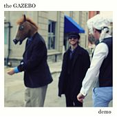 Demo by Gazebo