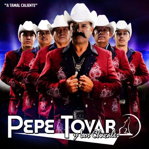 A Tamal Caliente von Pepe Tovar Y Los Chacales