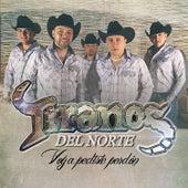 Voy A Pedirte Perdón by Los Tiranos Del Norte