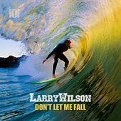 Don't Let Me Fall by Larry Wilson